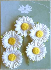 Green Tara Medium Daisies 5pk ~ White | Always Treasured Scrapbooking