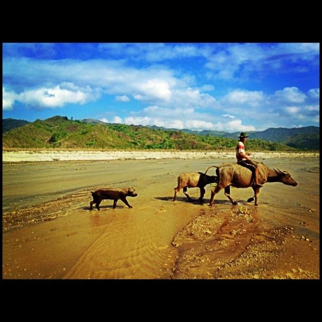 Lahar deposites of Mount Pinatubo