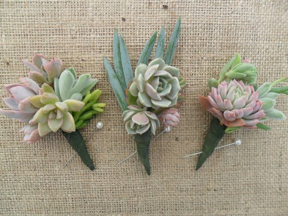 Purple-y and different shaped succulents for the groomsmen. Needs to be wrapped with something nicer than green tape.