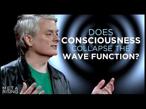 Does Consciousness Collapse the Wave Function? | David Chalmers Ph.D - YouTube