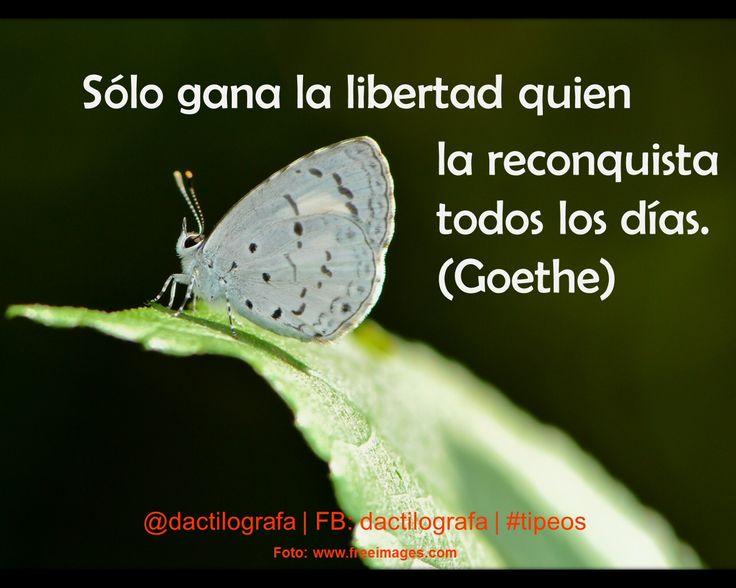 Sólo gana la libertad quien la reconquista todos los días. (Goethe) #Frases