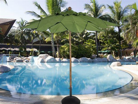 Find This Pin And More On Palm Tree Umbrella