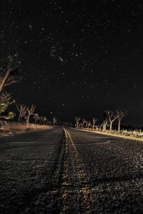 4x4girl:  This is what I see at night when I drive. Regardless of where I am.