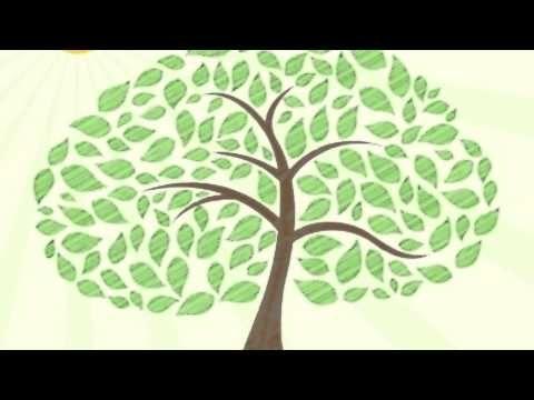 meditatie voor kinderen: de boom - YouTube