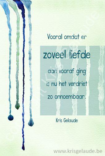 Kris Gelaude - Vooral omdat er zoveel -Illustratie Joke Eycken