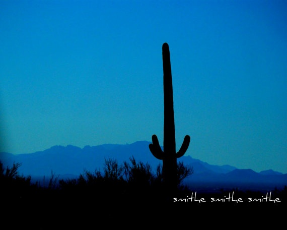 saguaro cactus at dusk in tucson arizona beautiful by boots2183, $8.00