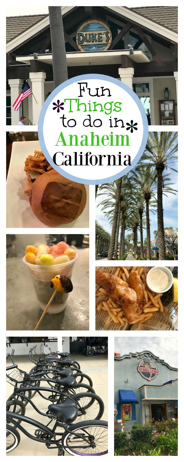 Anaheim Vacation Ideas-Things to do in Anaheim Other than Disneyland