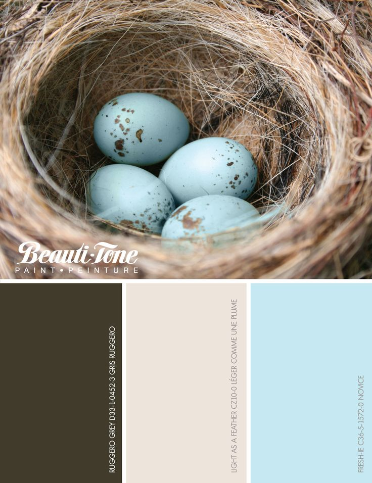 #BeautiTone dresses your home in a gorgeous new #spring coat of colour, inspired by a nature palette.