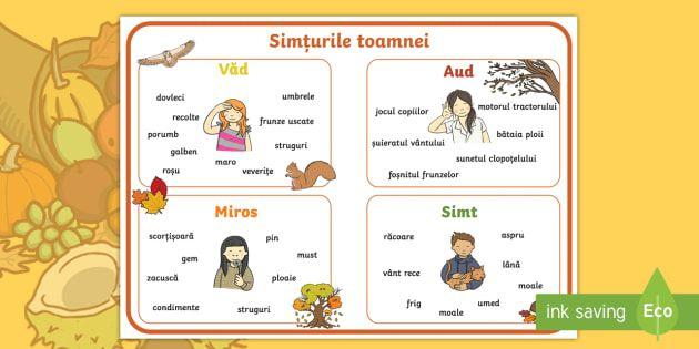Simțurile toamnei Planșă cu vocabular - scriere, compuneri despre toamnă, decorul de toamnă, simțuri, activități,Romanian