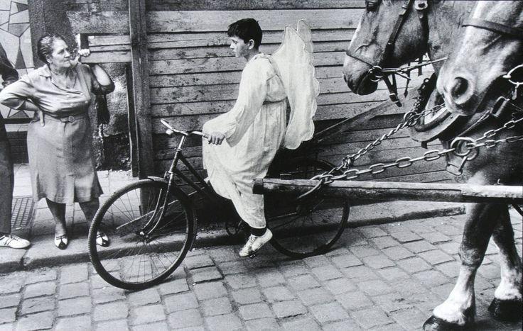 Una favola, un sogno, una fiaba. Un angelo in bicicletta attraversa la strada, mentre due cavalli neri trascinano una carrozza accanto a lu...