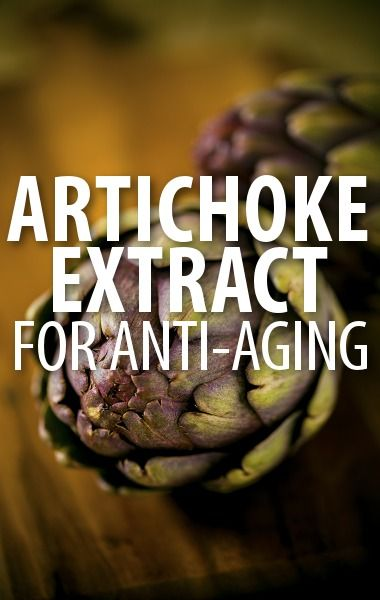 Dr Oz and nutritionist Heidi Skolnik explained the body benefits of Artichoke Extract in various forms, including a dietary supplement, tincture, and tea. http://www.recapo.com/dr-oz/dr-oz-natural-remedies/dr-oz-anti-aging-artichoke-extract-cholesterol-artichoke-tea-review/