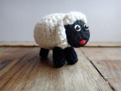 Das Amigurumi-Schaf Kilkenny steht von alleine und schaut sympathisch drein. Ein...