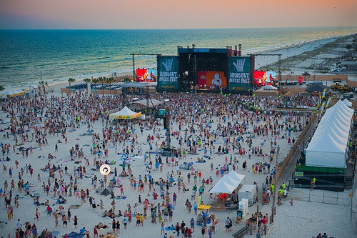 Concert field...uh right next to the ocean...String Cheese, Red Hot Chilli Peppers, Edward Sharpe, etc. etc.