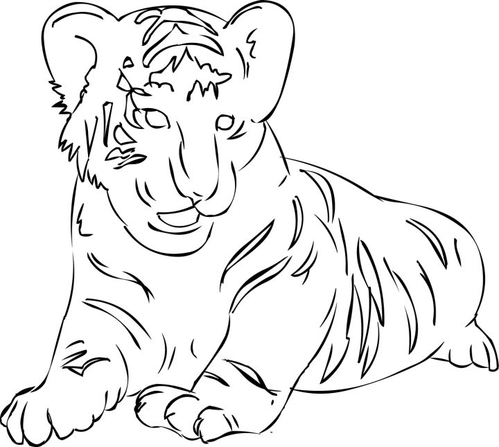Cute Tiger Coloring Pages Mother Day Drawings Kids