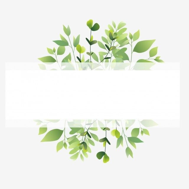 Green Leaf Frame Leaf Leaf Frame Beautiful Png And Vector With Transparent Background For Free Download Green Leaf Background Green Leaves Watercolor Leaves