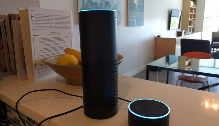 The Amazon Dot Is More Than a Small Echo - Fortune