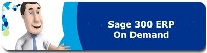 Your proven leader for sage 300 hosting in the U.S.A. With hundreds of satisfied customers in the U.S.A. and Canada.