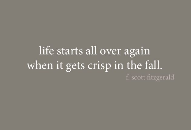 the rise and fall of jay gatsby in the great gatsby by f scott fitzgerald In f scott fitzgerald's the great gatsby, there is a viaduct between the weather  outside, and the characters emotions on the inside and the out.