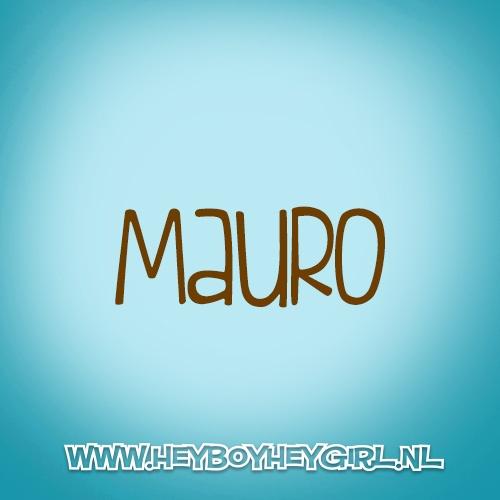 Mauro (Voor meer inspiratie, en unieke geboortekaartjes kijk op www.heyboyheygirl.nl)