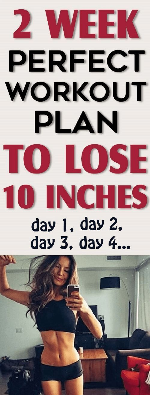 2 week workout plan, perfect for loosing belly fat | Fitness and Beauty Dose