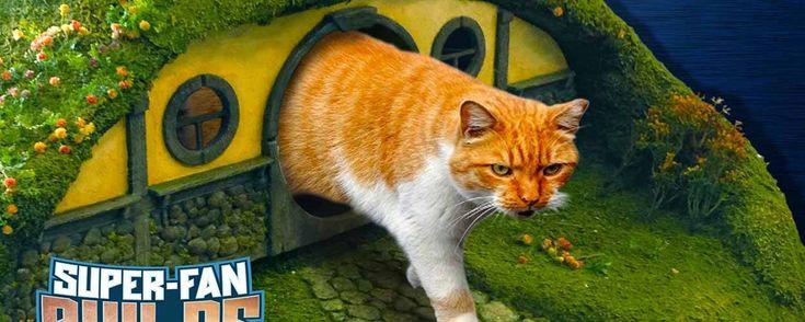 Une maison de hobbit toute mignonne pour que votre chat règne sur la Comté