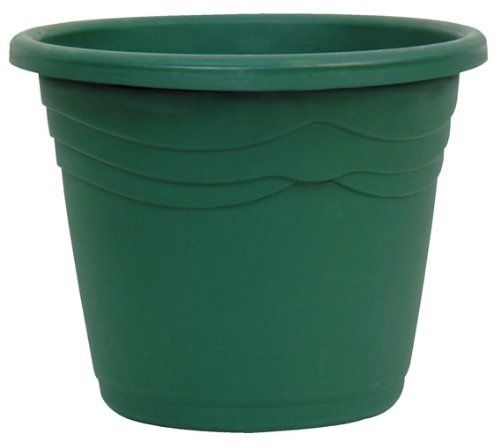 Dynamic Design IT0824FE Italia 8-Inch Poly Planter with Saucer, Fern by Dynamic Design. $7.84. Innovative functionality and exquisite color, design and finish. Refreshed color palette. Classic design. Durable life. Innovative and attractive. Poly planters are perfect for the home, garden, patio and balcony. They are durable, have effective drainage, and won't chip or crack due to changes in temperature.. Save 40% Off!