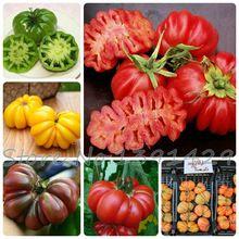 Semillas de hortalizas de Tomate 'Marmande' Semillas RARAS Semillas-100 de Calidad SUPERIOR, de jardinería del hogar de DIY, el envío gratuito!(China (Mainland))