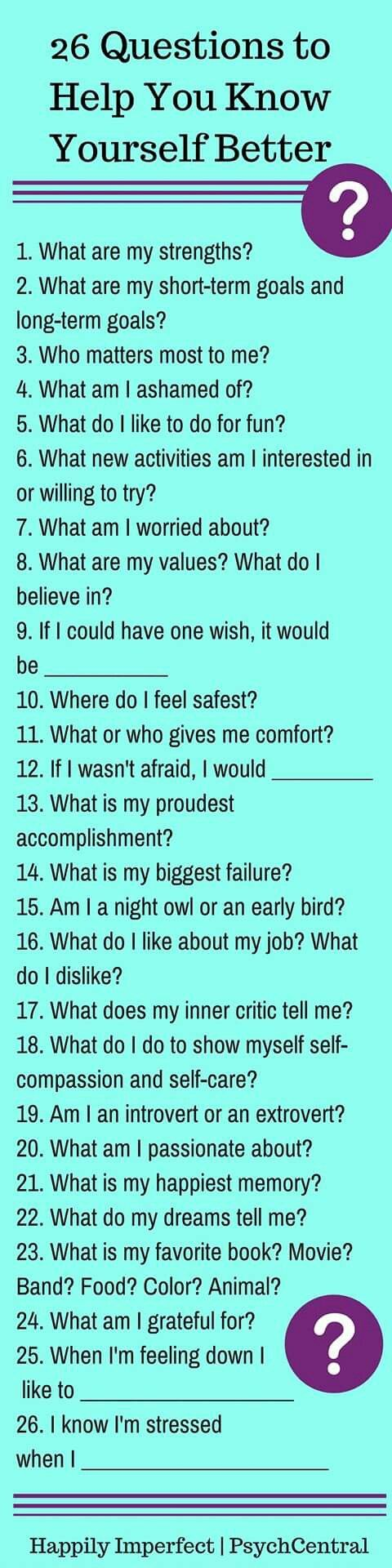 Therapist questionnaire