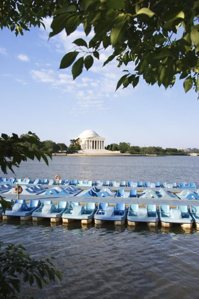 Tidal Basin Paddle Boats, see a guide to boating with views of the Jefferson Memorial and the Japanese cherry trees on the Tidal Basin in Washington, DC