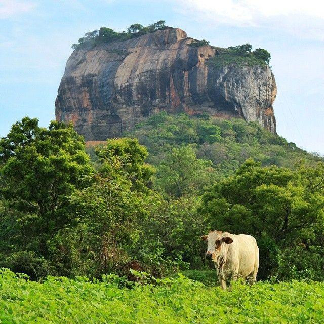 Sri Lanka in 20 Instagram Photos