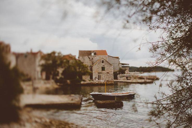 Dalmatian Island Prvic