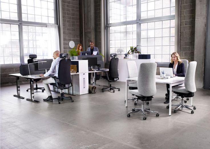 Kinnarps - Height adjustable work desk Oberon - Task chair Capella