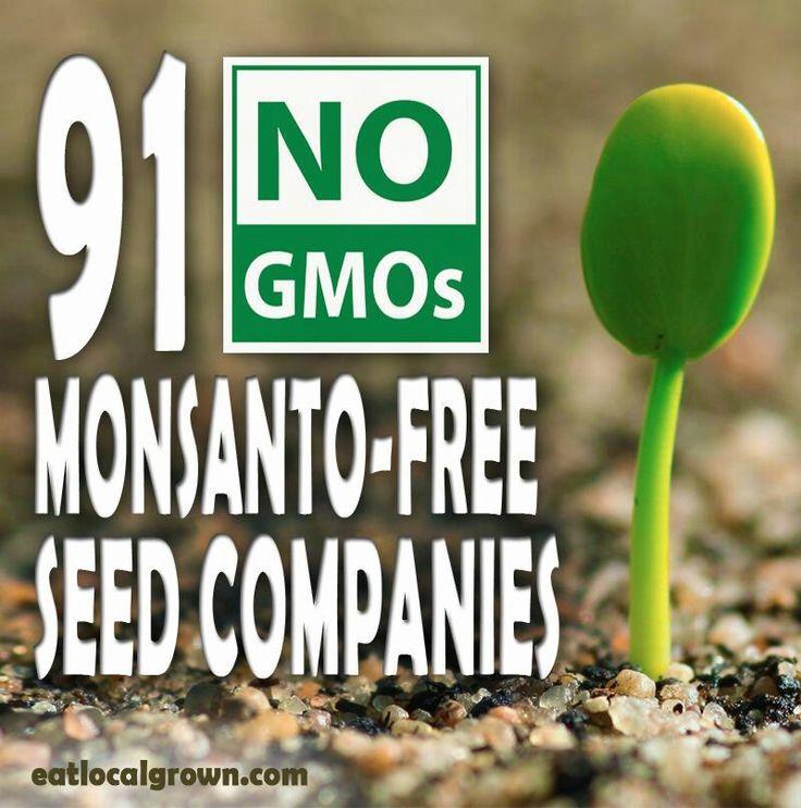 Monstanto-free seed companies