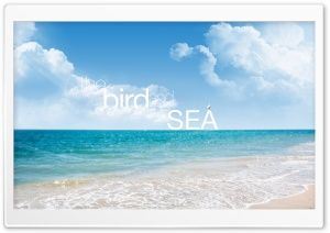 The Bird and The Sea HD Wide Wallpaper for Widescreen