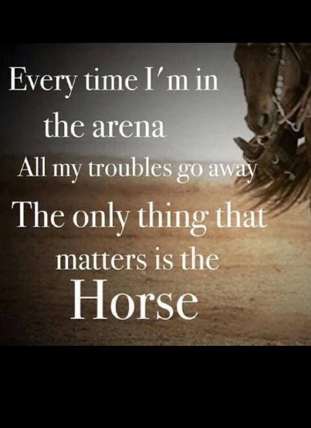 #Western #horses #arena