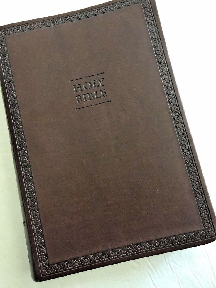 Zondervan Thinline LARGE PRINT Holy Bible NIV Italian Duo-Tone Faux Leather  | eBay