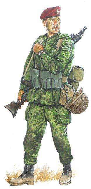 Danish Army, commando, pin by Paolo Marzioli                              …
