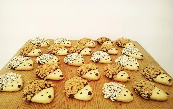 Süni sütik! Hedgehog cookies!