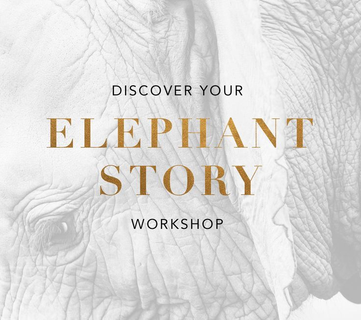 elephant-story-workshop  Why do I feel like I am not good enough, why do I run away from love, and why was I afraid to raise my hand and ask for what I deserve? – This is a question we all ask ourselves. The answer often elude us – because it means that we need to be honest with ourselves. It means we need to dig deep and have the courage to face what we know is true. Or sometimes we just don't know where to start or what to do. Through this workshop, Karlyn shares her CEP Model – which will…