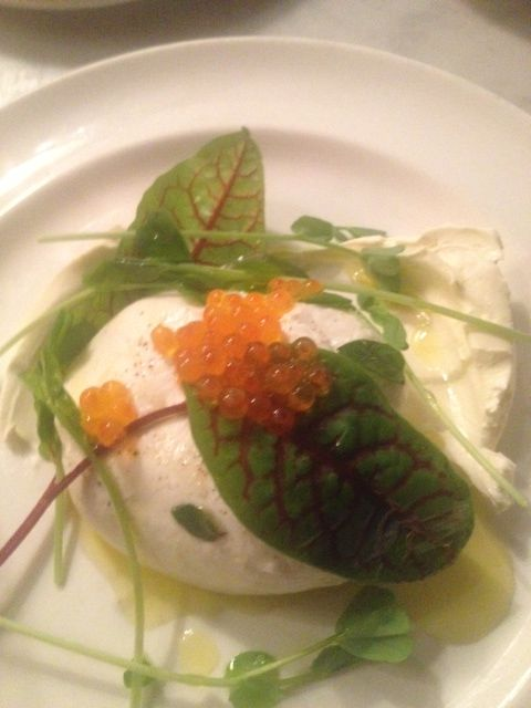 Burrata with trout roe and black mint the john dory oyster for Food bar john roe