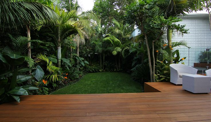 Zones-landscaping-subtropical-plants-backyard-full.jpg (1180×680)