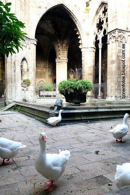 La catedral de Barcelona Claustro Barcelona Catalonia