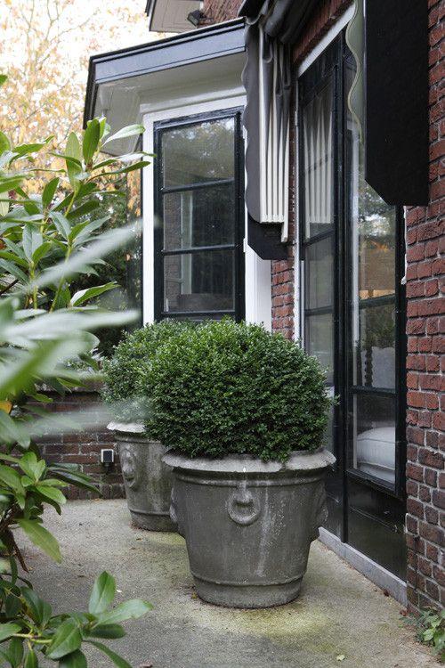Sfeer tuin.. laurierstruiken ♡ Prachtige potten met buxus