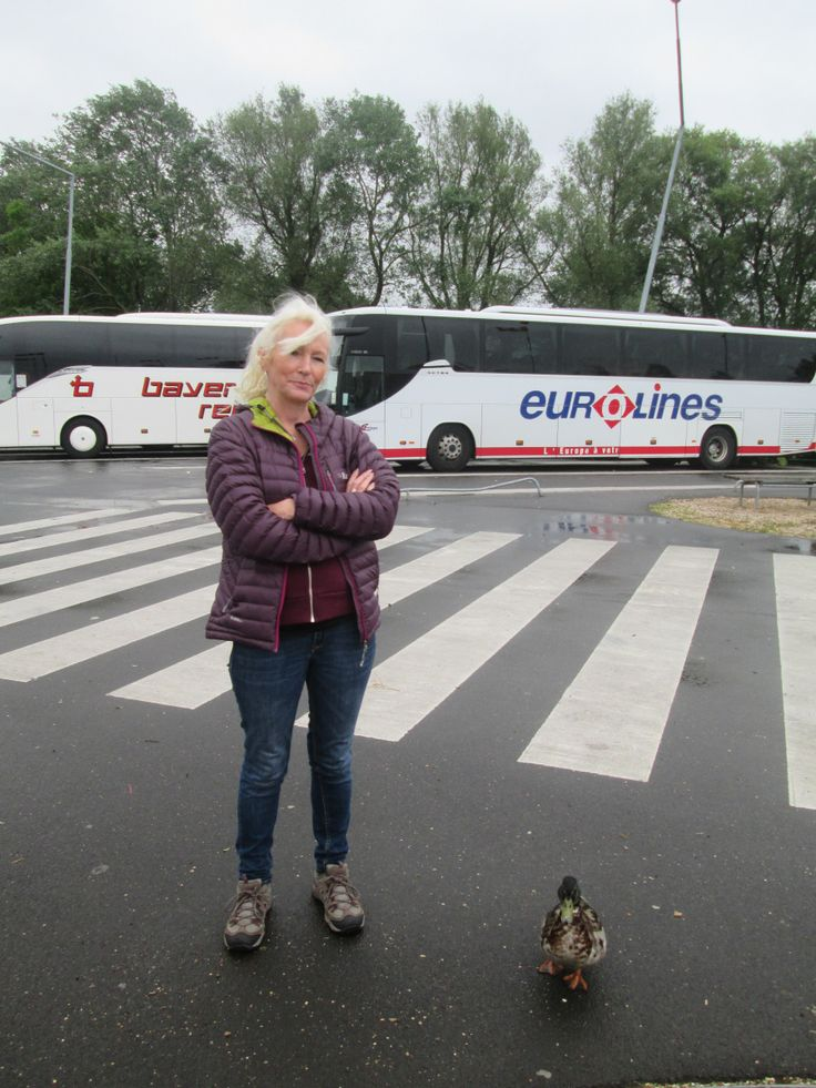 After leaving Amsterdam at 9.30am we made our way back to the bus station, we arrived very early and waited patiently, Sally even made a friend in the form of a duck in the car park and aptly named...