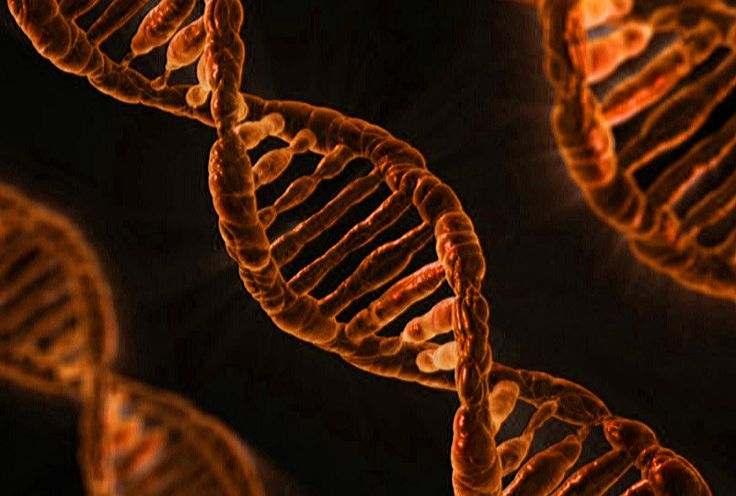 gene therapy-what is gene therapy-gene therapy definition-therapy gene- gene therapy cancer- somatic gene therapy-germline gene therapy-Gene Augmentation Therapy-Gene Inhibition Therapy
