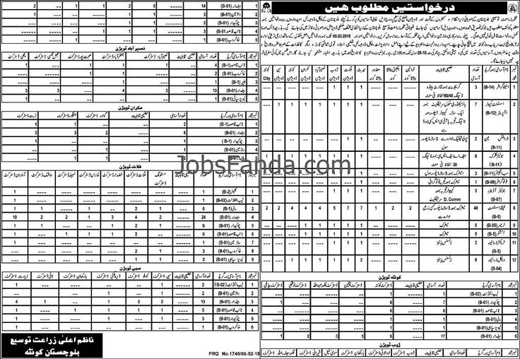 Agriculture Department Jobs 2018 In Balochistan For Stenographer And Junior Clerk https://www.jobsfanda.com/agriculture-department-jobs-2018-in-balochistan-for-stenographer-and-junior-clerk/