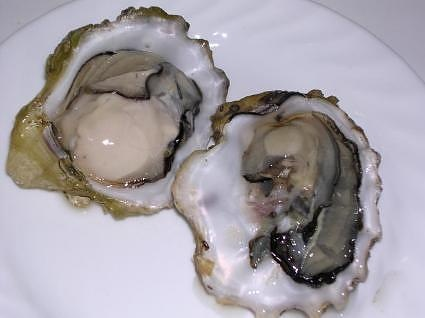 raw oysters with lemon, horseradish, cocktail sauce and a cracker
