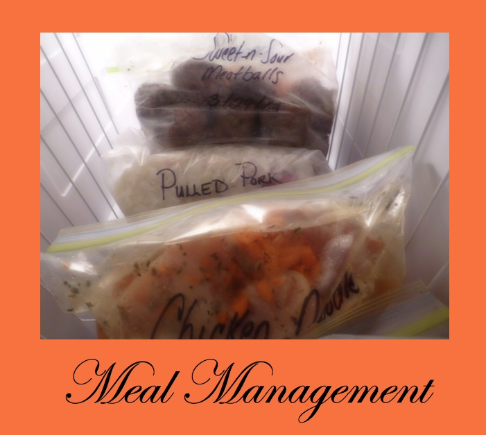 Neat concept to making quality meals for your family saving money and time.  http://www.youtube.com/user/athomewithnikki