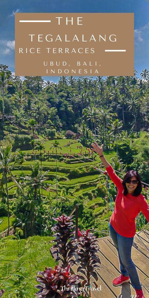 Luwak Coffee, Bali Swings & Tegalalang Rice Terraces My