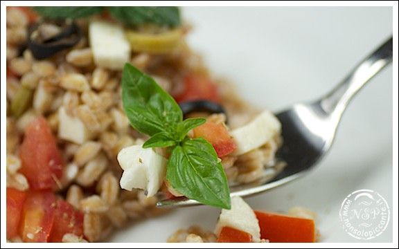 Spelt salad (Garfagnana typical food)       #italian #food